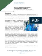 Instructivo Impuesto Al Consumo de Bolsas Plásticas