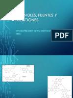 Exposición de polifenoles. Fuentes y aplicaciones