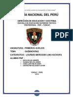 QUEMADURAS TRABAJO MONOGRAFICO.docx