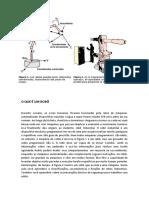 o Que é Um Robô (Laerson) PDF