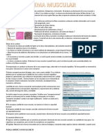 Sistema Muscular geriatria