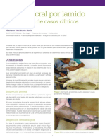 Dermatitis Acral