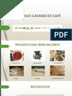 Protocolo de Calidad de Cafe (1)