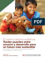 Federacion Internacional de resiliencia.pdf