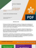 1. RESULTADO PREVENCIÓN DE RIESGOS - NIVEL TECNÓLOGOevide.pptx