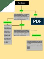 Microfinanzas mapa conceptual