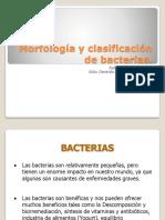Morfologia y Clasificacion de Bacterias