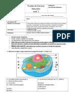 Evaluación Coef 1. Célula y Función