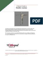 Shoulder PDF Shoulder Anatomy