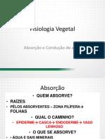 Fisiológica Vegetal