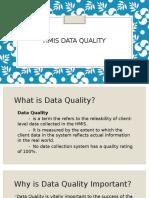 HMIS- Data Quality