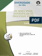 Chave Taxonomica de identificação para a ordem dos insetos.pdf