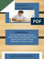 Pruebas de Aprovechamiento Estandarizadas (1)