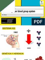 Sistema Xg