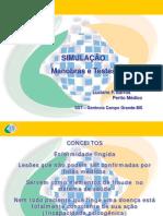 Simulação_Manobras e Testes (Luciano Barros - INSS)