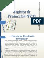 Registro de Producción (PLT)