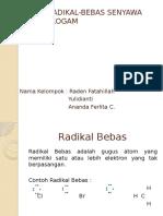 REAKSI RADIKAL-BEBAS SENYAWA ORGANOLOGAM.pptx