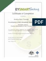 certificate -participant -webinar - 28 april 2017