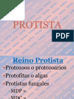 PROTISTA BRYCE 2013.pptx