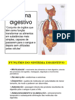 Sistema Digest Ivo