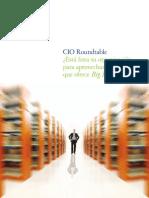 BigData_CIO_deloitte.pdf