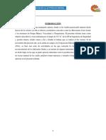 Informe Rinconada