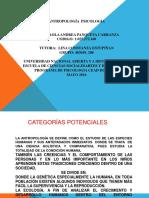 Diapositivas Paola Panqueva