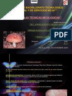 Micologia 2 Miriam