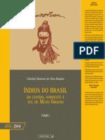 Indios Brasil v.1
