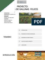 GALLINAS FELICES