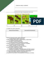Examen de Ciencia y Ambiente 4