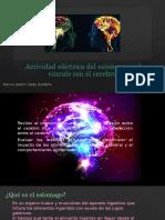 Relacion Del Estomago-cerebro