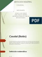 diapositiva caudal.pdf