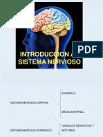 Generalidades Del Sistema Nervioso 2013-1