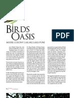 La_19 Birds Oasis