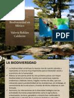 BiodiversidadMX