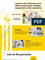 Funciones de La Enfermera en Recuperación.