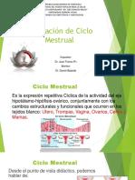 Regulación de Ciclo Mestrual