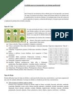 Características de Los Árboles Para Ser Incorporados a Un Sistema Agroforestal