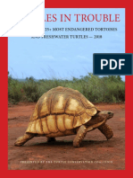 25+ Most Endangered Turtles.pdf