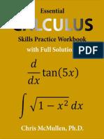 Essential Calculus Skills Practice Workbook With Full Solutions