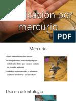 Intoxicacion por mercurio