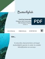 L11 - Butterflyfish