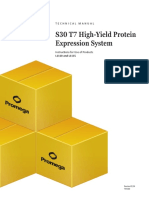 s30 t7 High Yield Protein Expression System Protocol
