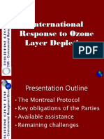 (3) the Montreal Protocol