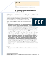 Time Course Study of Delayed Wound Healing in a BiofilmChallenged Diabetic Mouse Model