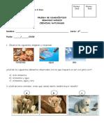 OK-Diagnóstico Naturales 2º.doc