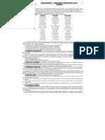 Reglamento Div Inf 2019