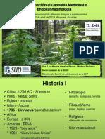 Aproximacion Cannabis - Ecuador 2018