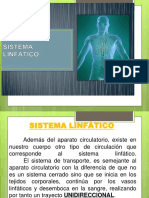 13 Sistema Linfatico